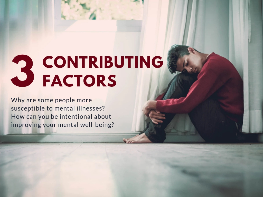 3 Contributing Factors to Mental Illness